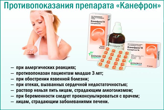 Канефрон для беременных при цистите 14