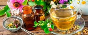 Польза фитотерапии при цистите