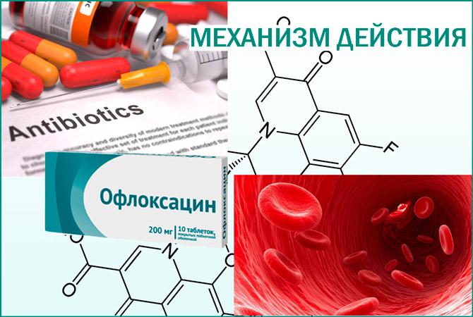 Офлоксацин действие