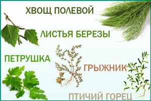 Составляющие Фитолизина