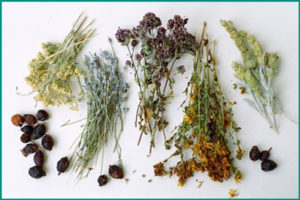Травы от простатита: польза растений