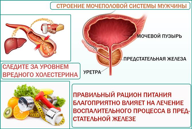 Что важно знать про диеты
