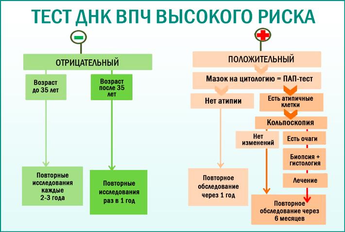 ВПЧ-тестирование