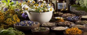 Лекарственные растения от простатита