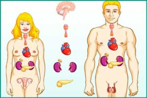 Гормональные нарушения у мужчин и женщин