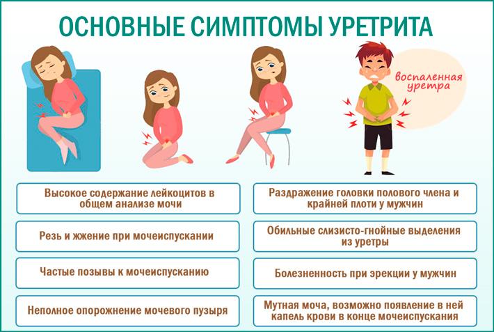 Уретрит. Основные проявления уретрита