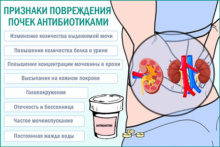 Негативное воздействие антибиотиков на почки