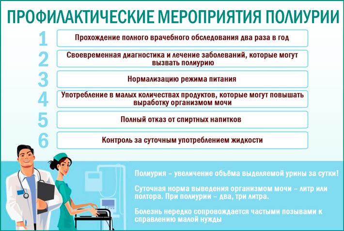 Полиурия: профилактика заболевания