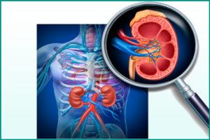 Изменение показателей почечного кровотока