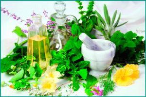 Лечение опухолей травами, лекарственными растениями