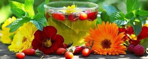 Лечения пиелонефрита народными средствами
