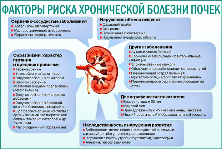 Хроническая болезнь почек (ХБП)