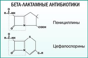 Бета-лактамные антибиотики