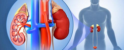 Бессимптомная форма хронического пиелонефрита