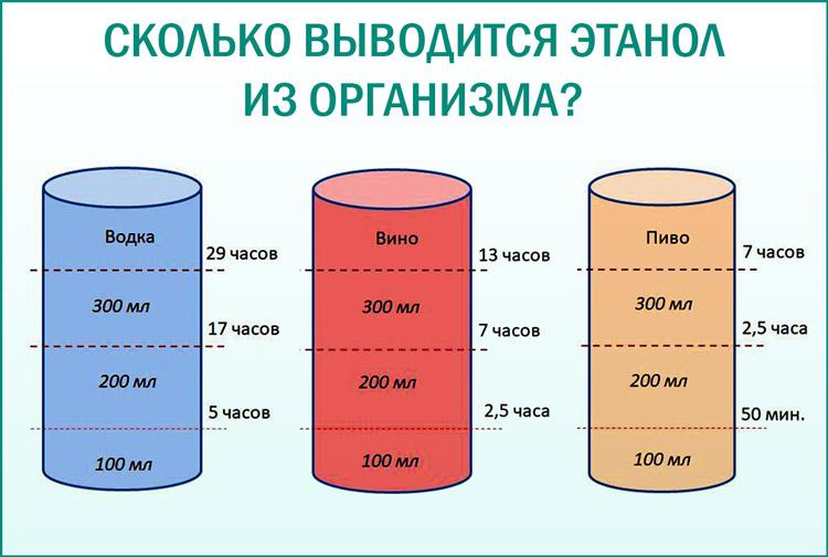 Как долго выводится алкоголь