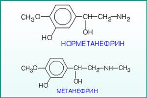 Формулы норметанефрина и метанефрина
