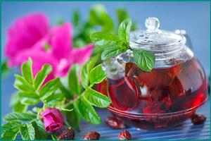 Чай из ягод шиповника