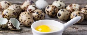 Перепелиные яйца как эффективное средство для потенции
