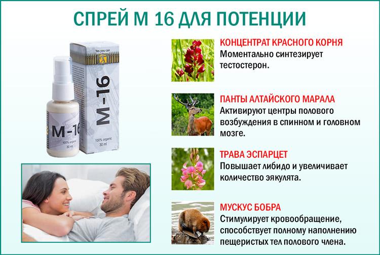 Состав препарата для потенции М 16