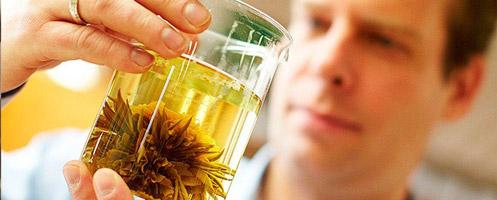 Сборы лекарственных трав для повышения мужской потенции
