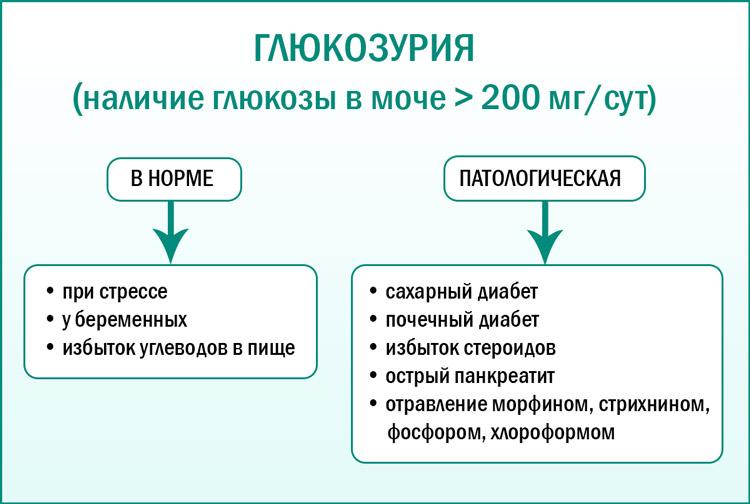 Глюкозурия: причины появления