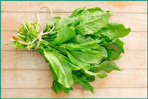 Отказ от кислых овощей при подагре