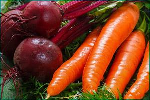 Свекла и морковка