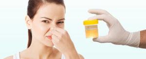 Специфический запах мочи и методы его устранения