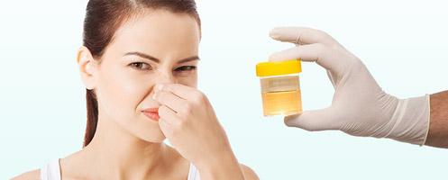 Изменение запаха мочи у женщин причины
