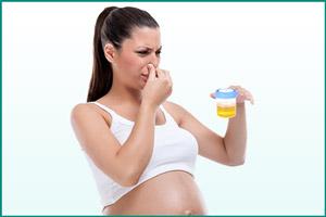 Плохой запах мочи у беременной