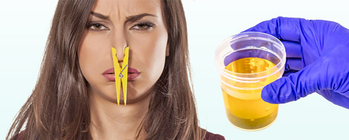 Неприятный запах мочи — чем пахнет ваша урина